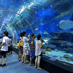 徐州海底世界