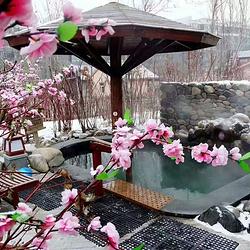 林甸北国温泉