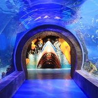 广汉海立方海洋亲子乐园