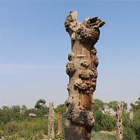 奇石山文化旅游区