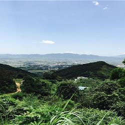 揭阳玉湖山生态茶园