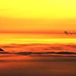 大东山滑翔伞基地预约费成人票