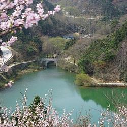 鸡公山桃花寨景区