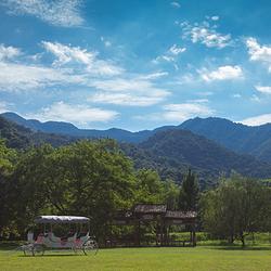 灵溪河森林旅游渡假公园