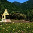 南丹山原生态风景区