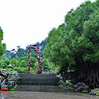 开化根宫佛国文化旅游区