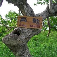 黑龙江凤凰山国家森林公园