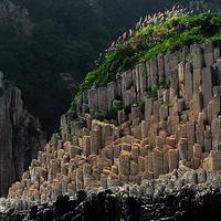 花岙岛石林