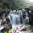 长塘桃花源生态旅游区