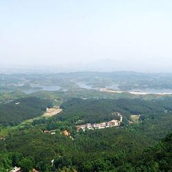 麻城五脑山森林公园