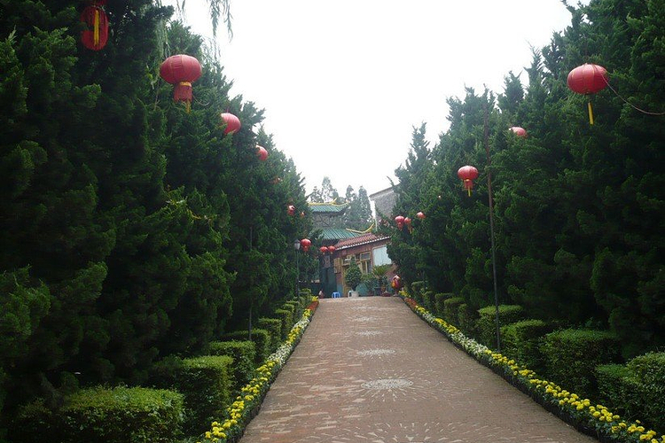 泰丰农业生态植物观光园旅游