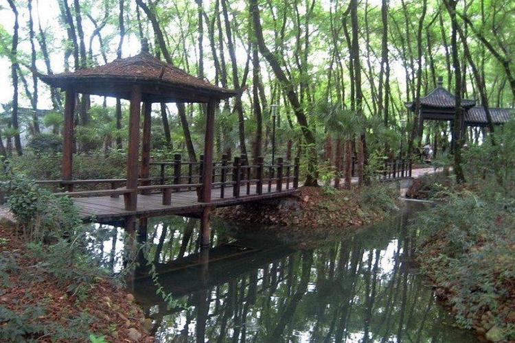 相思林公园旅游