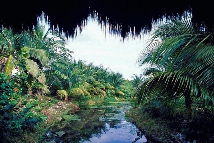 云溪生态公园旅游