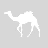 银基动物王国