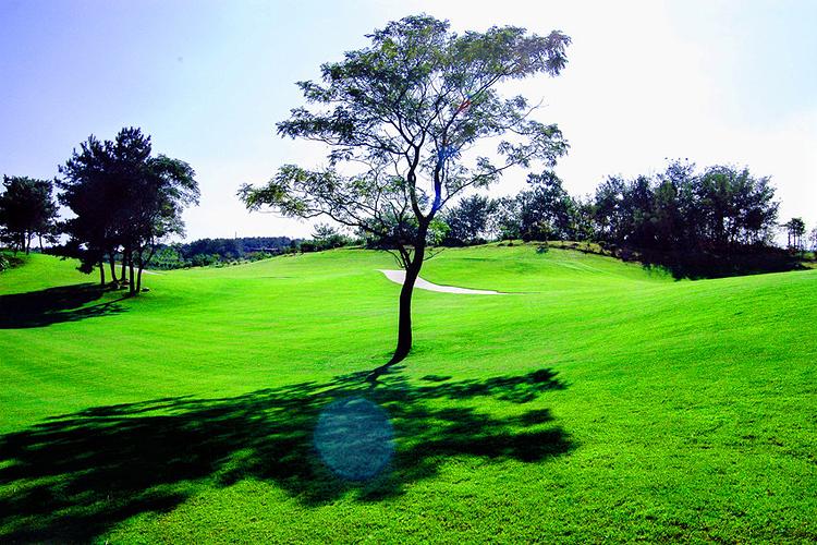 保利高尔夫球会旅游
