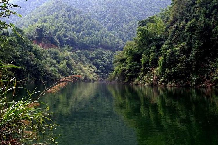 碧湖潭森林公园旅游