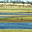运城湿地自然保护区
