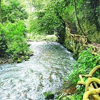 大王岭原始生态旅游景区