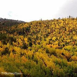 红拉山自然保护区
