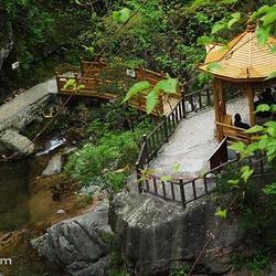 桃花冲森林公园