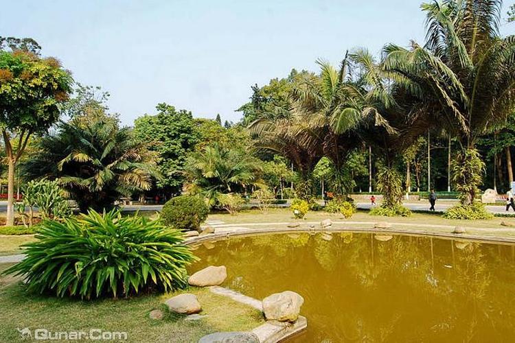 广西药用植物园旅游