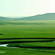 阿拉善通湖草原
