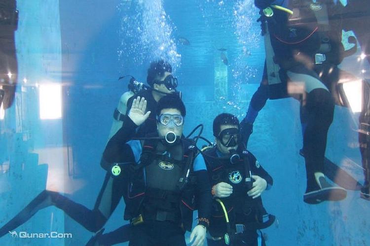 铃兰国际潜水俱乐部旅游
