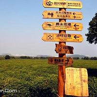 宜兴龙池山自行车公园