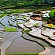 金刚台(西河)生态旅游区