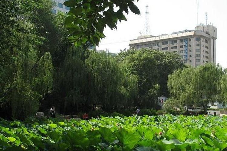 莲湖公园旅游