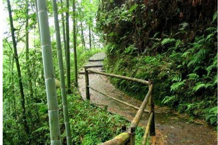 玉兰山风景区旅游