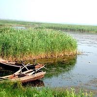 河北衡水湖