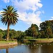 毛里求斯皇家植物园