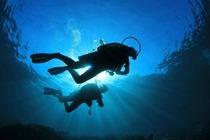 芽庄OW初级潜水考证套餐(专业教练,优质潜点)