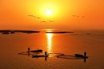鄱阳湖国家湿地公园/内湖船票/观光车自选门票2张+鄱阳候鸟驿站酒店大床房