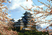 日本个人单次旅游签证   东北领区(限东北户口除大连及在东北工作人事)