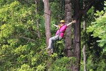 飞跃体验清迈丛林飞跃Jungle Flight(多套餐可选)