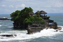 专车专导巴厘岛海神庙+脏鸭餐+乌布+梯田下午茶一日游