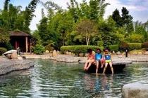 汝城温泉(含氡)休闲 巴士1日跟团游度假游