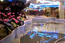 娱乐在九华北京九华山庄16区标间/大床+温泉主题公园票+送云佛滑雪场雪票