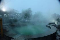 绿羊温泉成人票2张+无锡绿羊温泉度假酒店森林筒屋+ 双早