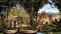 3天2晚上海浦东机场莎海国际酒店+上海迪士尼乐园/上海野生动物园