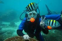 三亚加井岛户外潜水一日游 水质清,海南的第二个马尔代夫