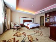 上海欢乐谷+维也纳国际酒店(上海松江店)