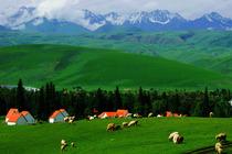 新疆旅游(包团定制)花漾伊犁:薰衣草、那拉提、喀拉峻、天鹅湖6日环游
