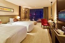 深圳丽雅查尔顿酒店+玫瑰小镇成人票