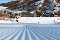 冬季来滑雪2晚张家口崇礼源宿酒店+早餐+密苑云顶乐园两天雪票+索道含雪具