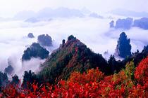 商务纯玩(长沙-张家界国家森林公园+天门山玻璃栈道+黄龙洞3日游)赠三下锅