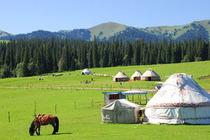 新疆中旅之南山牧场特惠(汽车纯玩)一日游 无强制消费,含二道门票—乌拉斯台