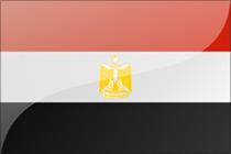 埃及|商务签证半年多次-代发邀请函|海洋国旅签证中心-全国包邮